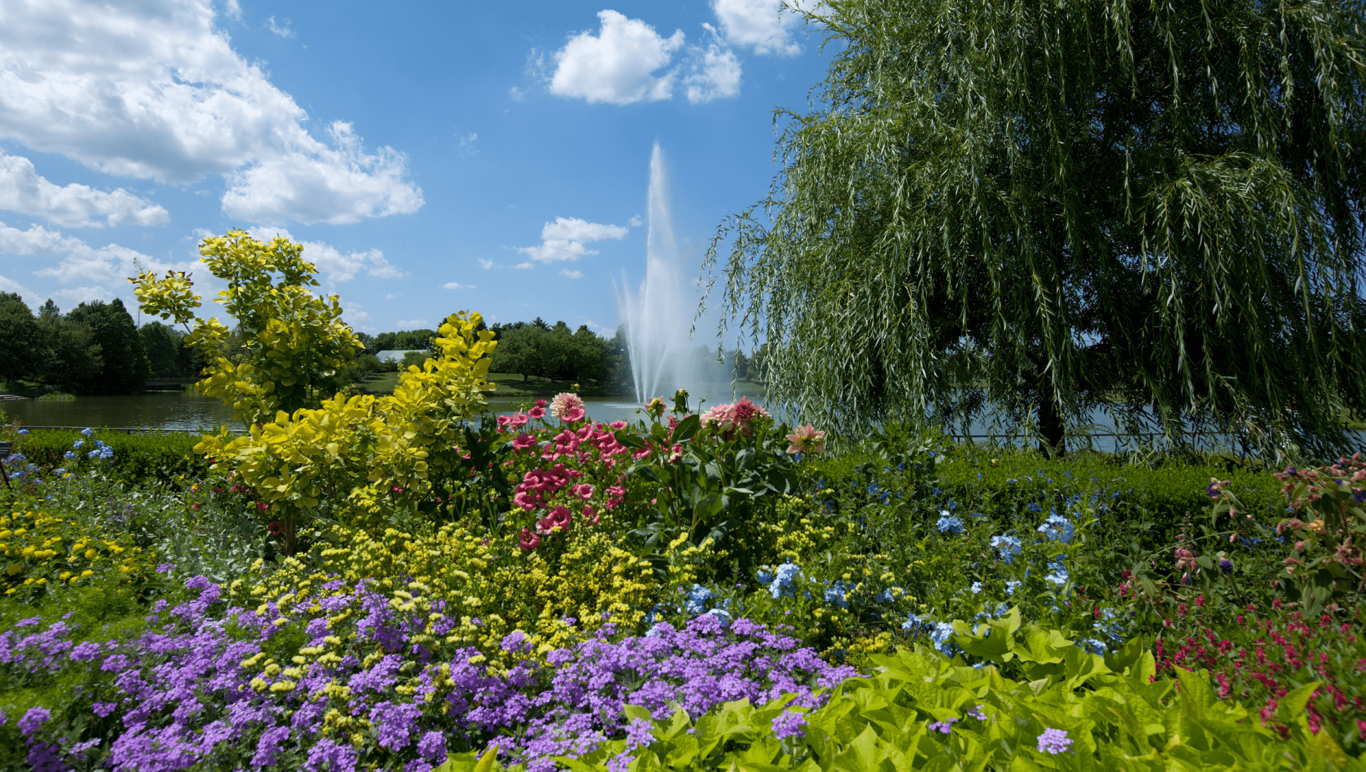 colorful botanical garden with blue sky background