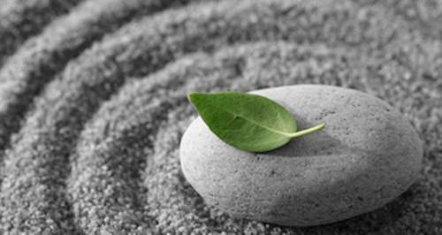 a leaf resting on a stone sitting in concentric circles of gray sand