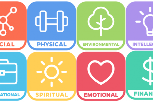 logo of the eight windows to wellness