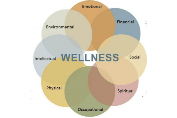 wellness in eight dimensions assessment logo